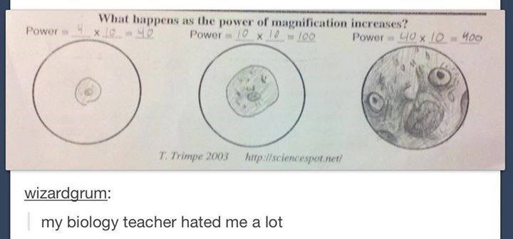 Text - What happens as the power of magnification increases? 1Ox10100 Power x C 4 Power Power O x LOM00 T. Trimpe 2003 http://sciencespot.net wizardgrum: my biology teacher hated me a lot
