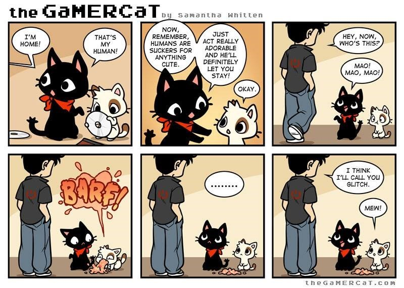 Comics - the GaMERCaT by saMantha whitten NOW, REMEMBER, HUMANS ARE SUCKERS FOR ANYTHING JUST ACT REALLY HEY, NOW, WHO'S THIS? I'M HOME! THAT'S MY ADORABLE HUMAN! AND HE'LL DEFINITELY CUTE MAO! LET YOU MAO, MAO! STAY! OKAY I THINK I'LL CALL YOu GLITCH MEW! the GaMERCa T.cOM
