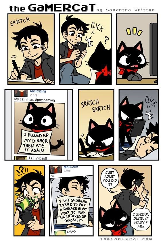 Comics - the GaMERCaTy by samantha Whitten SKRTCH CLICK 000 Maicolm 2 hrs My cat, man. #petshaming CLICK SKRTCH SKRTCH I PUKED uP My DINNER THEN ATE IT AGAIN LOL gross!! Malcom 6 hrs JUST ADMIT YOU DID IT! Ha. GOT SO DRUNK ITRIED TO PuT A PANCAKE IN My XBox To PLAY ADVENTURES OF PANCAKEY I SWEAR, DUDE, IT WASN'T ME! LMAO the GaMERCaT.cOM