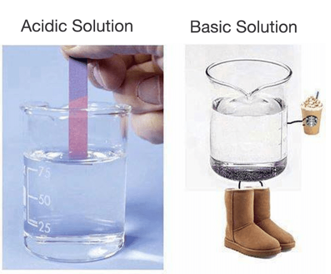 Funny meme about basic and acidic solution, basic solution wearing uggs and drinking pumpkin spice latte.