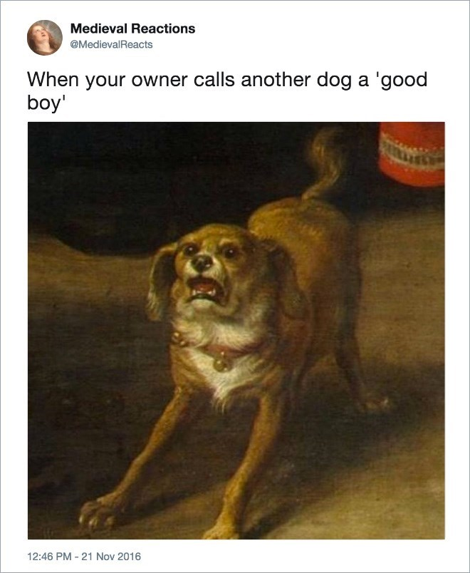 Dog - Medieval Reactions @MedievalReacts When your owner calls another dog a 'good boy 12:46 PM - 21 Nov 2016