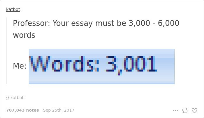 Text - katbot: Professor: Your essay must be 3,000 - 6,000 words Words: 3,001 Me: katbot 707,843 notes Sep 25th, 2017