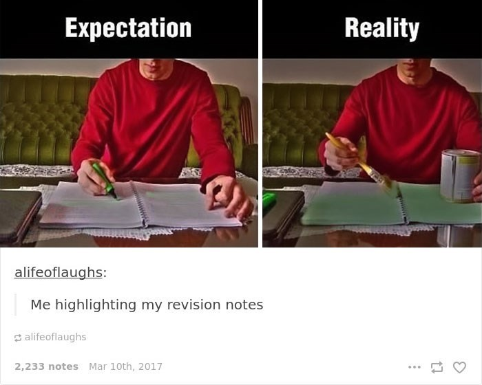 Text - Reality Expectation alifeoflaughs: Me highlighting my revision notes alifeoflaughs 2,233 notes Mar 10th, 2017 wwwww