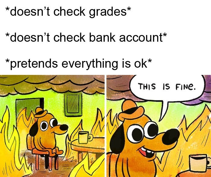Cartoon - doesn't check grades *doesn't check bank account* *pretends everything is ok* THIS IS FINE.