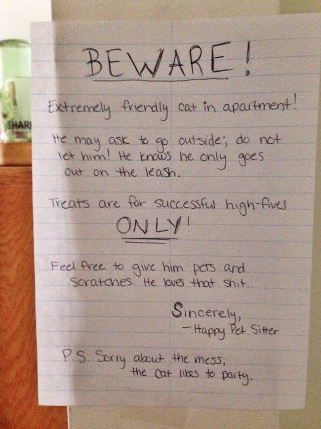 Text - BEWARE! Exetrennely frerdly cat in apartment! SHAR tte may ask to ap outside; do not ict him He knows he out on the leash. only gees Treats are for successfu high-Aives ON LY Fecl Pree to aive him pcrs and Scratanes. He loves that shit. Sincerely -Happy Pet Sitter PS. Sorny aout the mess the cat lites to party.