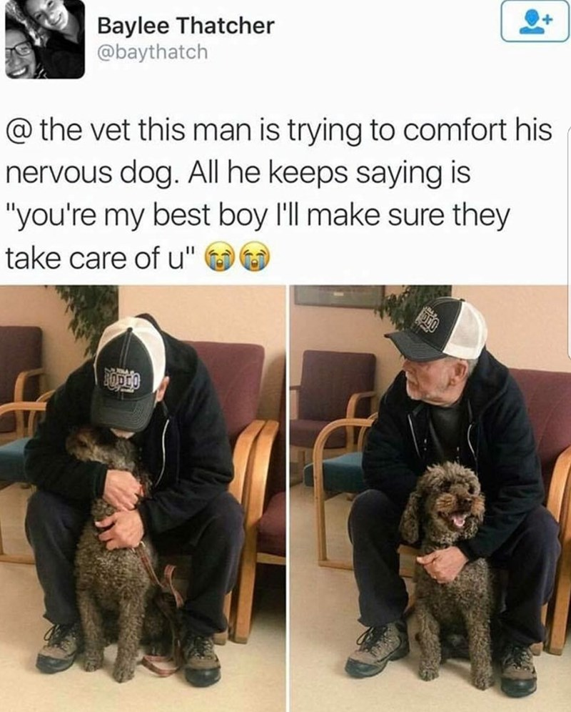 Man comforting his dog at the vet