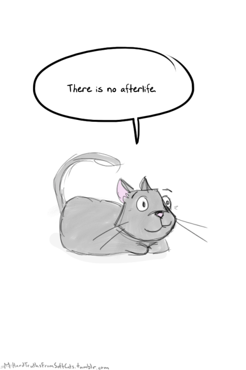 Mouse - There is no afterlife MHardTeuths FromskrCats,tmmble, o