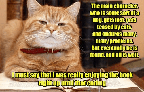 cat memes - Cat - The main character, who is some sortofa dog,gets lost gets teased by cats, and endures many, many problems But eventually heis found, and all is well. Omustsay that lwasreallyenjoyingthe book tightupuntilthatending