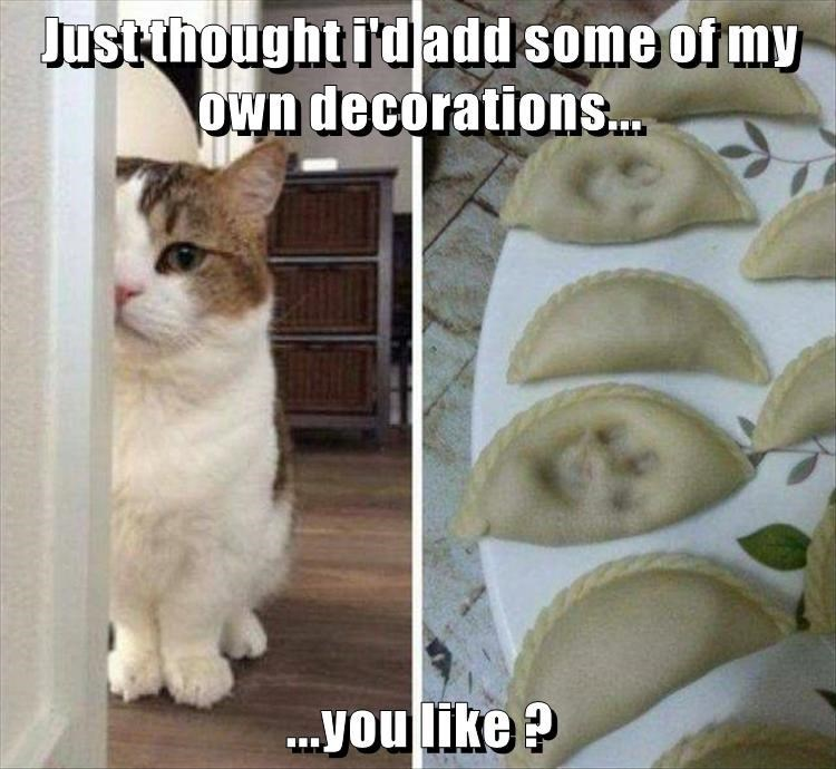 cat memes - Cat - Just thought i'dadd some of my Own decorations... ..you like?