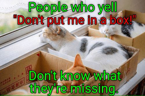 "cat memes - Cat - People who yell ""Don't put me in a box Don't know what they re missing 冷凍食品:"