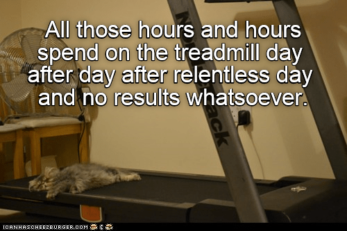 cat meme - Treadmill - All those hours and hours spend on the treadmill day after day after relentless day and no results whatsoever. ICANHASCHEEZEURGER COM