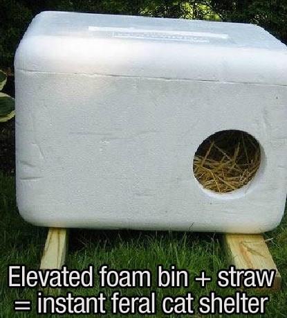 Grass - Elevated foam bin + straw instant feral cat shelter