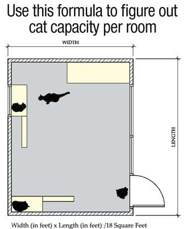 Text - Use this formula to figure out cat capacity per room WIDTH Width (in feet) x Length (in feet) /18 Square Feet HIONI