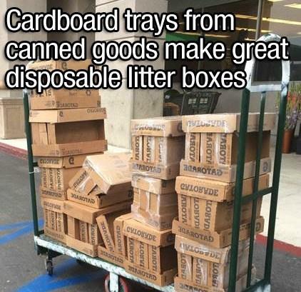 Transport - Cardboard trays from: canned goods make great disposable litter boxes ANOTAD 7VIYDE 304ROTAD OTAD CnorvaC AROTAD evLOBVDE 30SOTA AROTRD АОт! LOB LАЯОТА LAROT UBVD LOBVD LАЯОТА AHOTA LOBVD GAROTS LOBVE PLOUVI LOBV LAOIOTA eszorv 30AROYA aDTAD aoniail oanvel Eacwve