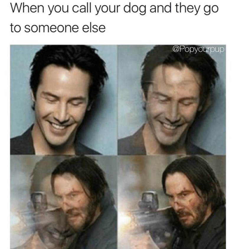 Funny meme about when you call your dog but it goes to someone else, using Keanu Reeves turning into John Wick as a metaphor for the anger.