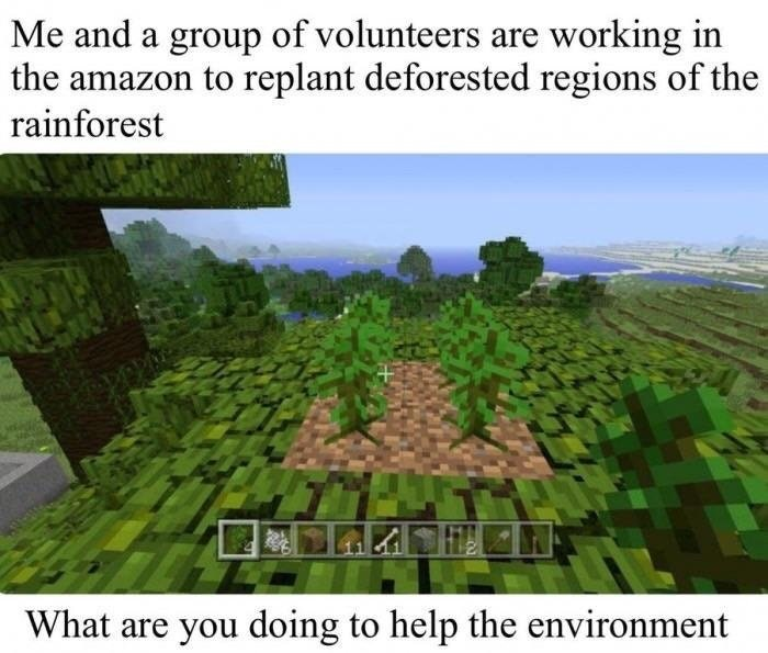 funny meme about doing something for the planet, but they just playing minecraft
