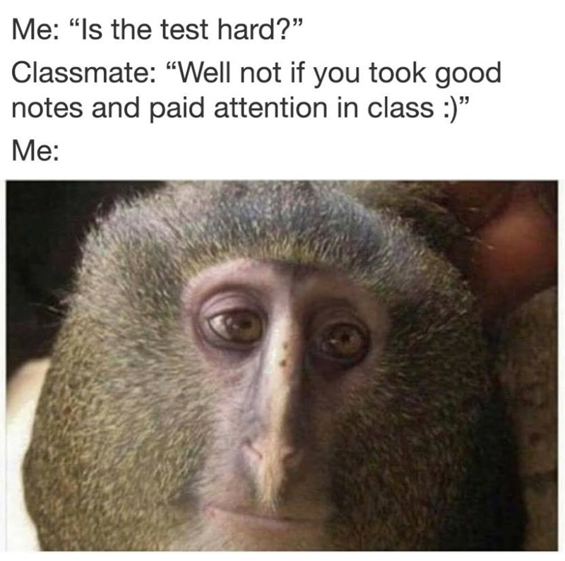 Funny meme about taking test with a picture of a monkey.