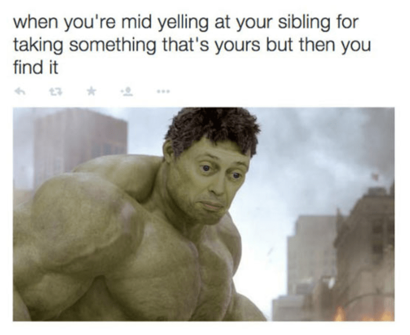 Steve Buscemi Hulk as how it feels when you are yelling at sibling for something they took and then you find it.