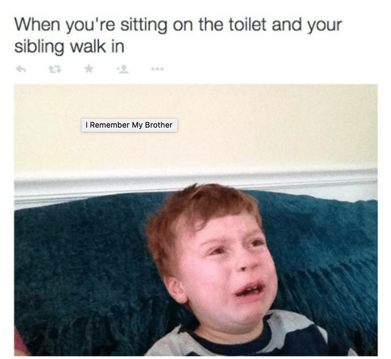 Meme about when you are sitting on the toilet and your sibling walk in