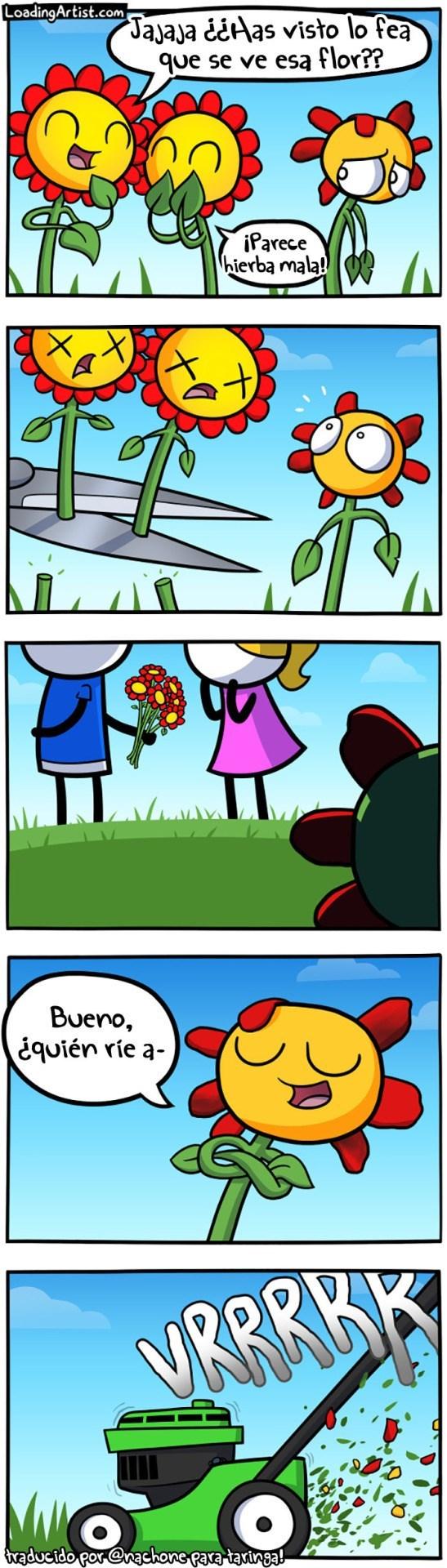 flor fea se burla de la suerte de las lindas
