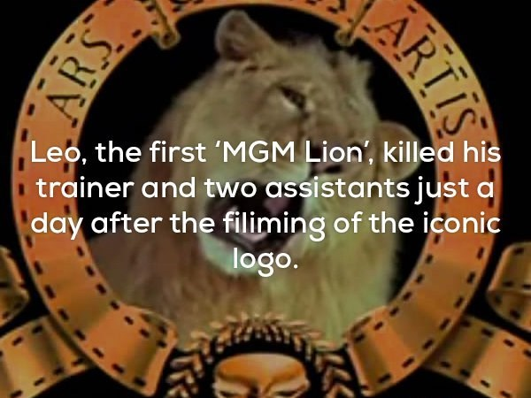 Font - Leo, the first 'MGM Lion', killed his trainer and two assistants just a day after the filiming of the iconic logo. ARTIS