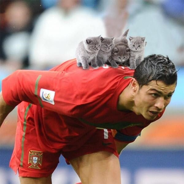 Ball on Messi's back is actually a bunch of kittens