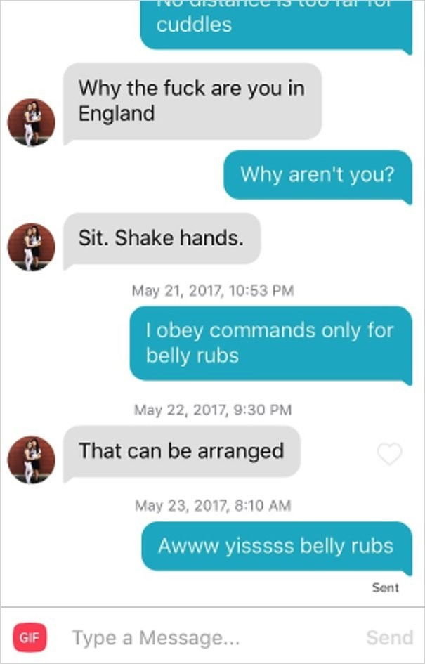 dog tinder - Text - cuddles Why the fuck are you in England Why aren't you? Sit. Shake hands. May 21, 2017, 10:53 PM I obey commands only for belly rubs May 22, 2017, 9:30 PM That can be arranged May 23, 2017, 8:10 AM Awww.yisssss belly rubs Sent Type a Message... Send GIF