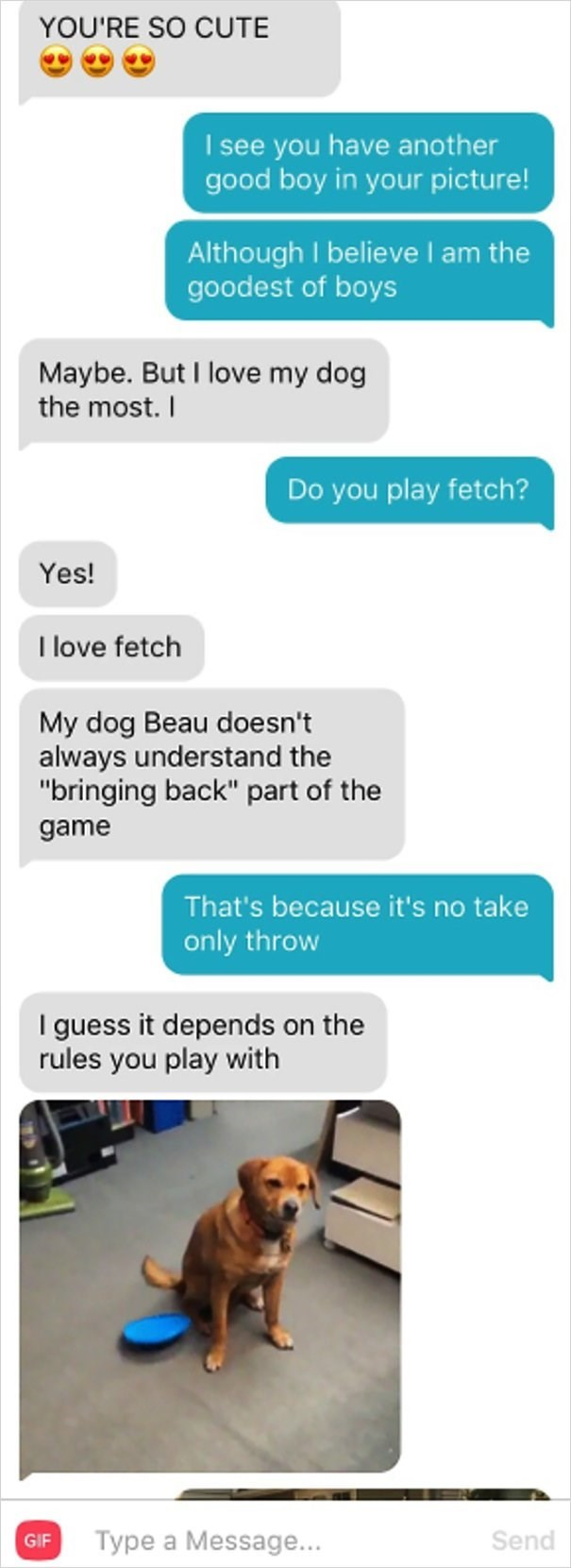 """dog tinder - Text - YOU'RE SO CUTE I see you have another good boy in your picture! Although I believeI am the goodest of boys Maybe. But I love my dog the most. I Do you play fetch? Yes! I love fetch My dog Beau doesn't always understand the """"bringing back"""" part of the game That's because it's no take only throw I guess it depends on the rules you play with Type a Message... Send GIF"""