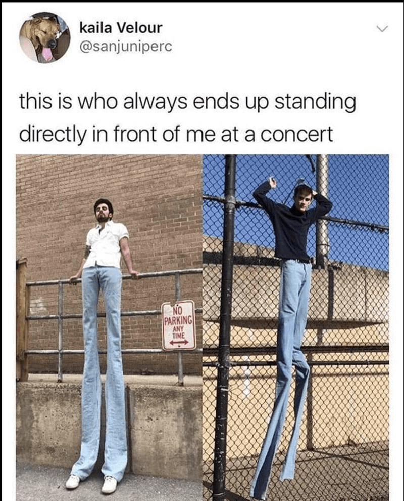 Funny sunday meme about tall guy standing in front of you at concert