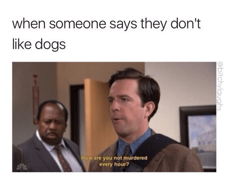 Sunday meme - Text - when someone says they don't like dogs How are you not murdered every hour? @bitchylauahs