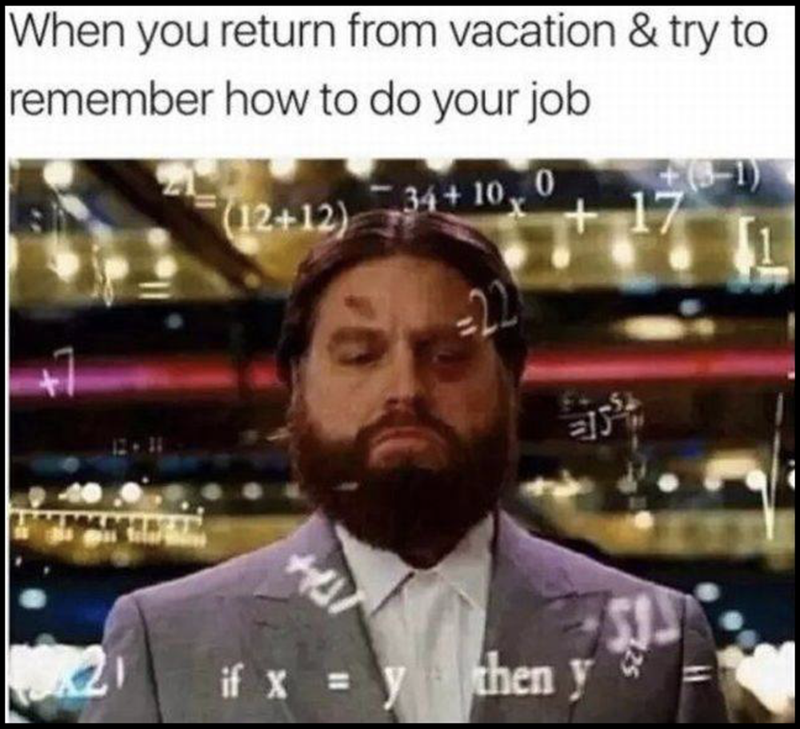Sunday meme - Facial hair - |When you return from vacation & try to remember how to do your job 17 (12+12) 34+ 10 if x =y theny