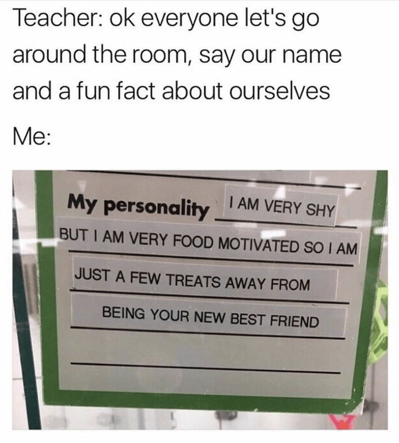 Sunday meme - Text - Teacher: ok everyone let's go around the room, say our name and a fun fact about ourselves Me: AM VERY SHY My personality BUT I AM VERY FOOD MOTIVATED SO I AM JUST A FEW TREATS AWAY FROM BEING YOUR NEW BEST FRIEND