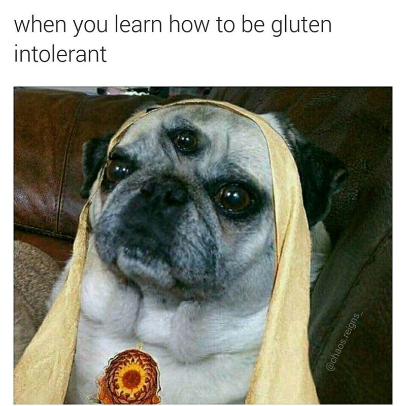 Funny meme about dog who is gluten intolerant and has a third eye.