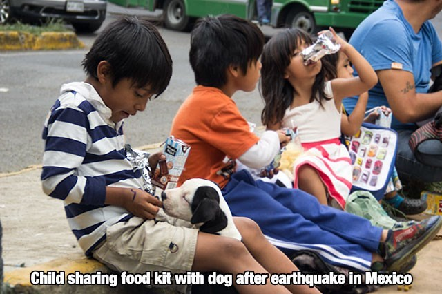 Kid in Mexico earthquake sharing food with his puppy