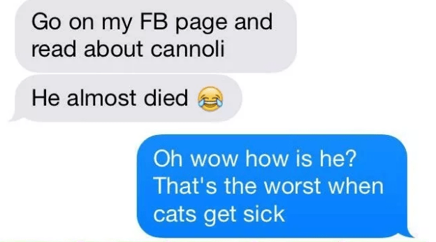 Text - Go on my FB page and read about cannoli He almost died Oh wow how is he? That's the worst when cats get sick