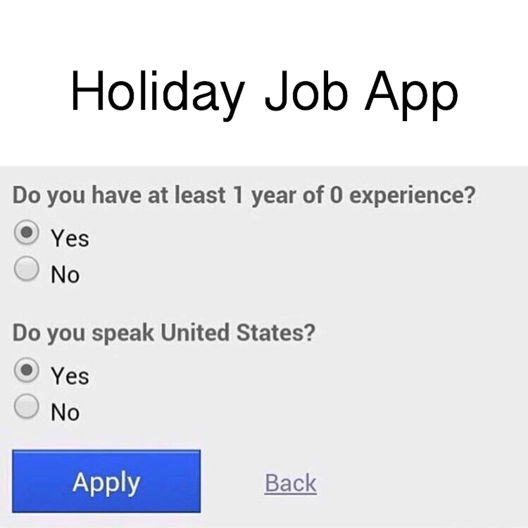 monday meme about the requirements from workers applying for holiday jobs