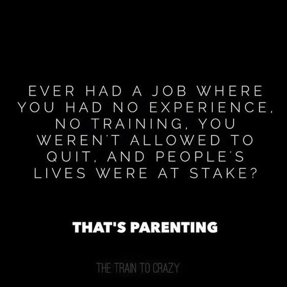 Text - EVER HAD A JOB WHERE YOU HAD NO EXPERIENCE, NO TRAINING. YOU WEREN T ALLOWED TO QUIT AND PEOPLE S LIVES WERE AT STAKE? THAT'S PARENTING THE TRAIN TO CRAZY