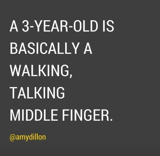 Text - A 3-YEAR-OLD IS BASICALLY A WALKING TALKING MIDDLE FINGER. @amydillon