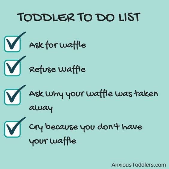 Text - TODDLER TO DO LIST Ask for waffle VRefuse waffle Ask why your waffle was taken away any because you don't have your waffle AnxiousToddlers.com