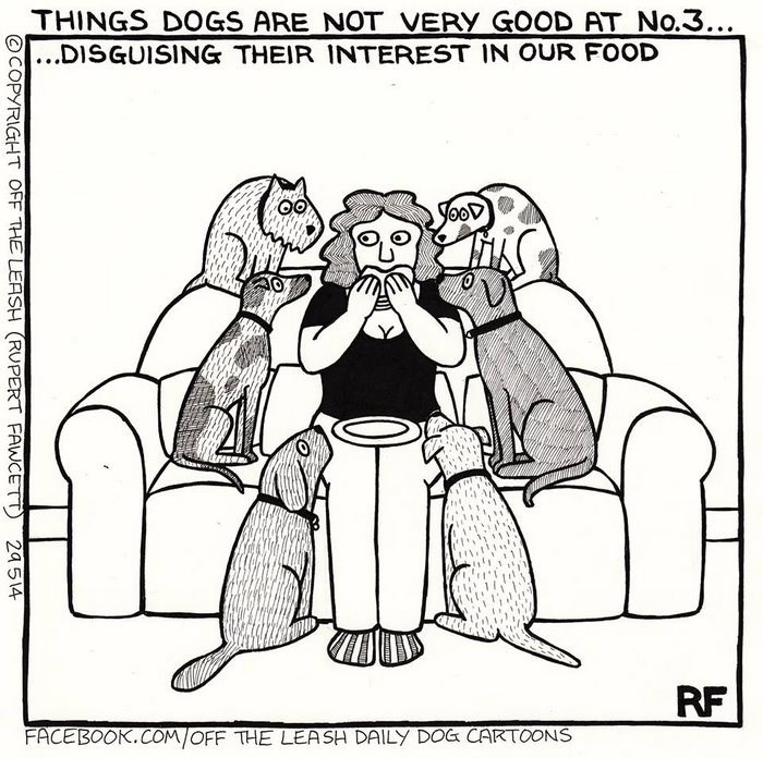 webcomic - Cartoon - THINGS DOGS ARE NOT VERY GOOD AT No.3.. ...DISGUISING THEIR INTEREST IN OUR FOOD RF FACEBOOK.COM/OFF THE LEASH DAILY DOG CARTOONS COPYRIGHT OFF THE LEASH (RUPERT FAWCETT 24514
