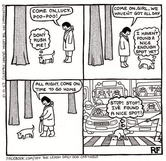 webcomic - Text - COME ON,GIRL, WE HAVENT GOT ALL DAY COME ON,LUCY Poo-Poo! I HAVENT DONT FOUND A NICE ENOUGH SPOT YET RUSH ME! ALL RIGHT, COME ON. TIME TO GO HOME STOP! STOP! IVE FOUND A NICE SPOT! RF FACEBOOK.COM/OFF THE LEASH DAILY DOG CARTOONS @COPYRIGHT OFF THE LEASH (RUPERT FAWCETT 25 10 13