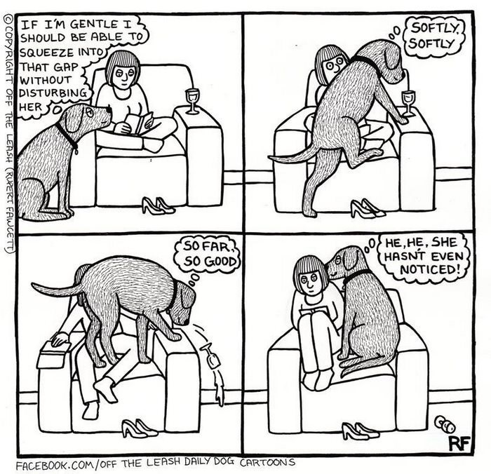webcomic - Cartoon - IF IM GENTLE I SHOULD BE ABLE TO SQUEEZE INTOJ THAT GAP WITHOUT DISTURBING HER 30 SOFTLY SOFTLY HE,HE, SHE HASNT EVEN NOTICED! SO FAR SO GOOD RF FACEBOOK.COM/OFF THE LEASH DAILY DOG CARTOONS DH OCOPYRIGHT OFF THE LEASH (RUPERT FAWCETT)