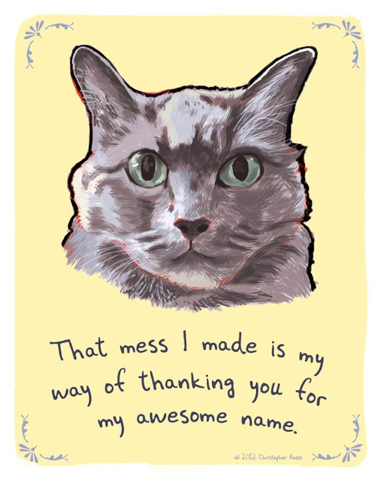 Cat - made is my That mess of thanking you for way my awesome name. 2012 Christapher Razz