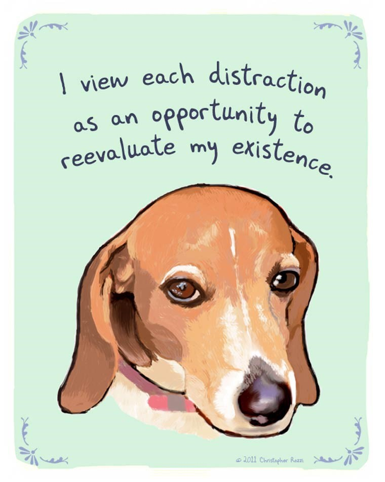 Dog - \ view each distraction opportunity to reevaluate my existence. as an 2011 Christapher Rozzi