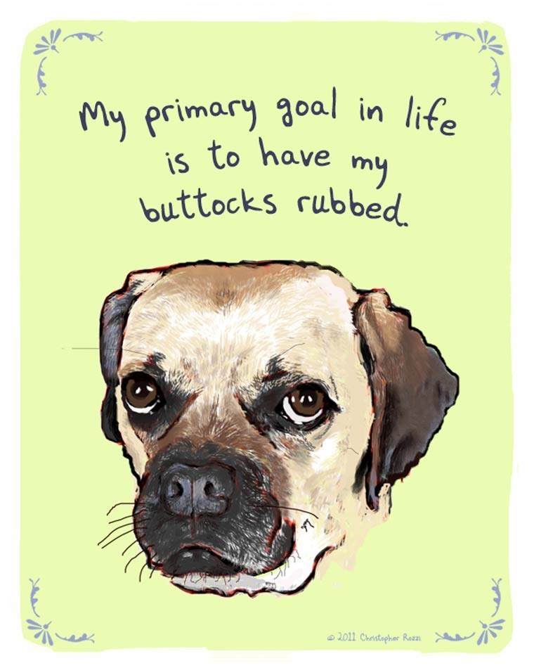 Dog - My primary g0al in life is to have my buttocks rubbed 2.011 Christopher Razzı