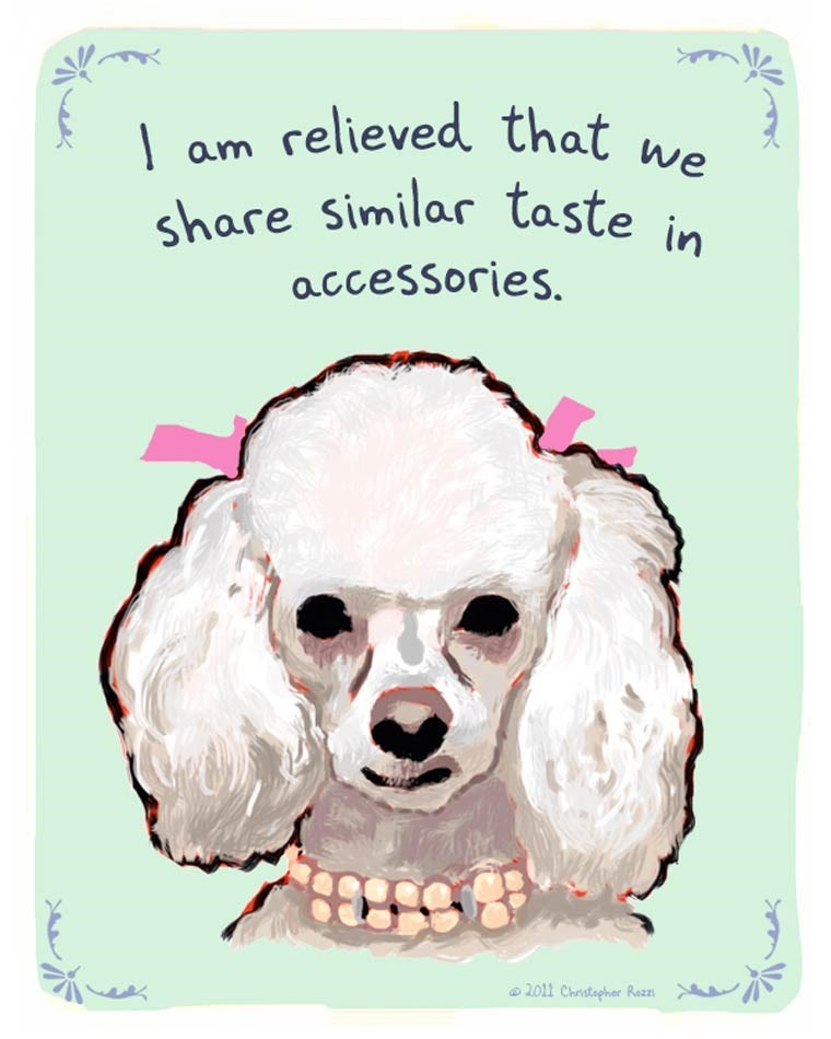 Dog - am relieved that we share Similar taste accessories. 2011 Christapher Rezzs