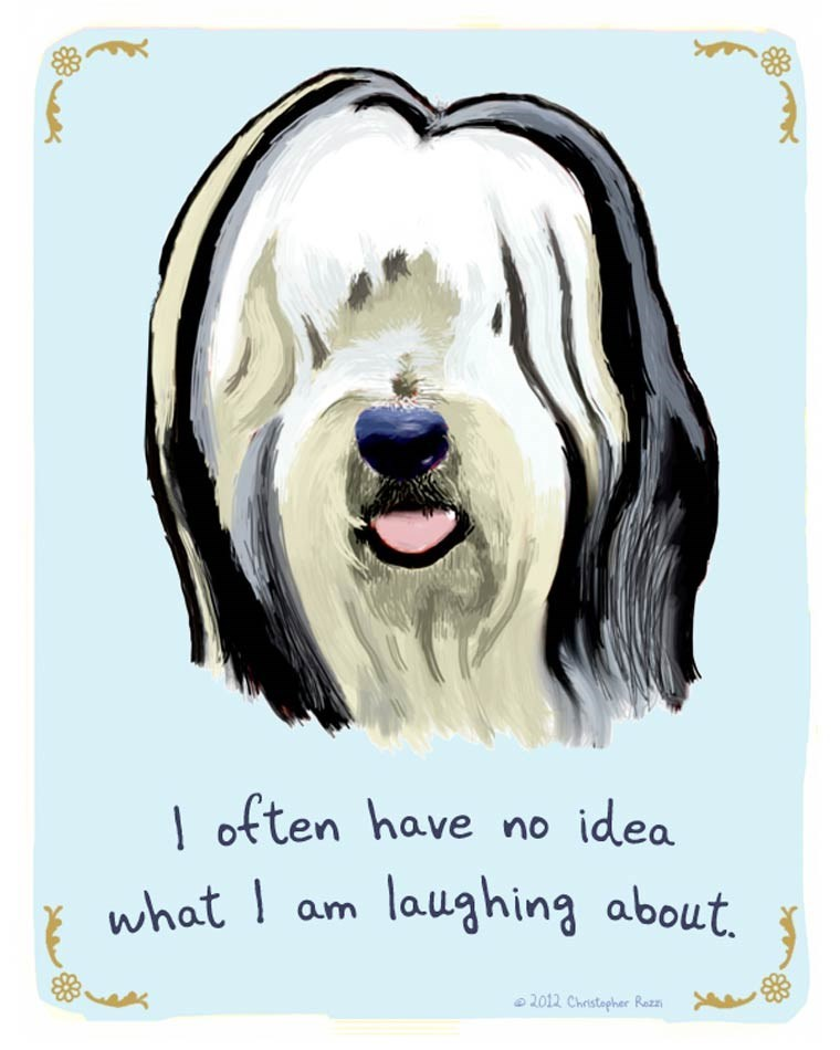 Dog - I often have no idea what I am laughing about 2012 Christapher Rezz