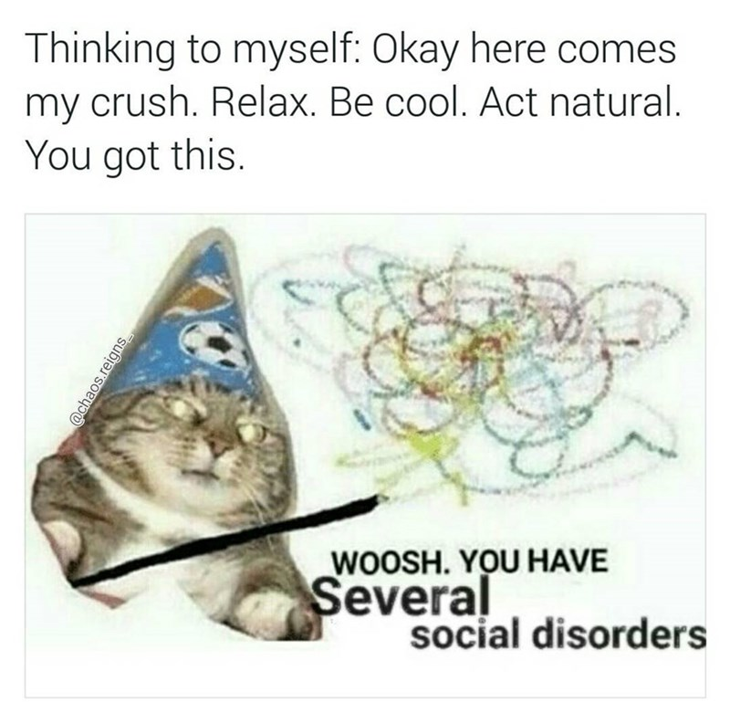 Funny meme about when you see your crush and want to act natural, wizard cat gives you several social disorders.