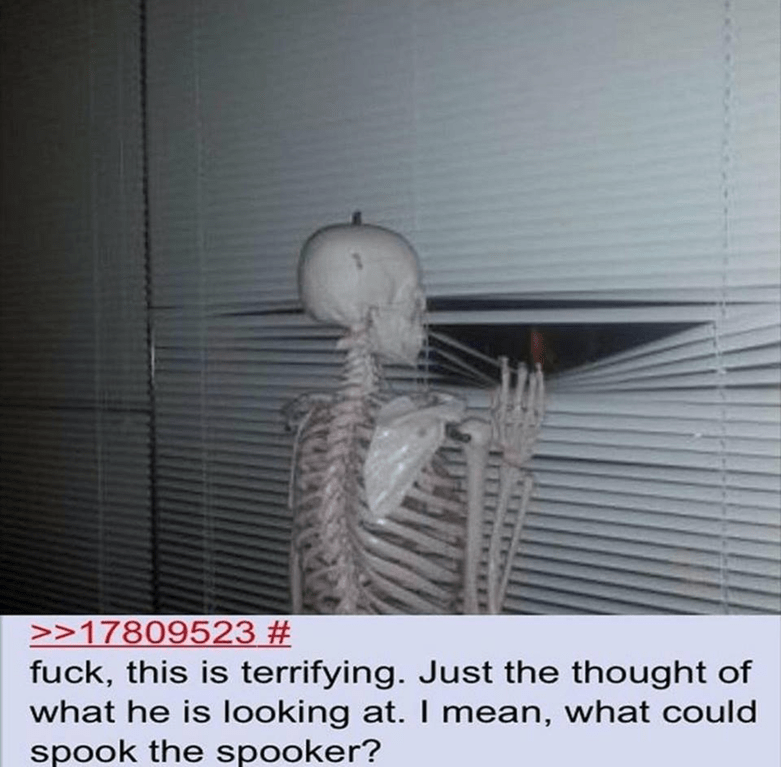 Funny meme about a skeleton getting spooked.
