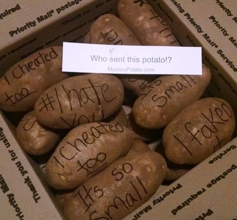 Cork - uired Priortty Mall postas Thank y Mall postge Cheated Who sent this potato!? too MysteryPotato.com Sma heae too Tts so mall Faken Service Priortty Mall rlority M Priority Ma sing Priority Mail Servic Mail Osta Thank you for usi riority M
